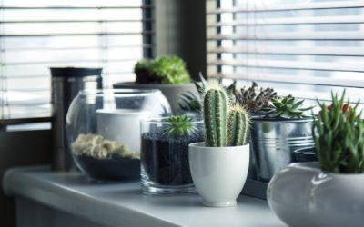 Okno drewniane czy aluminiowe – które będzie lepsze?