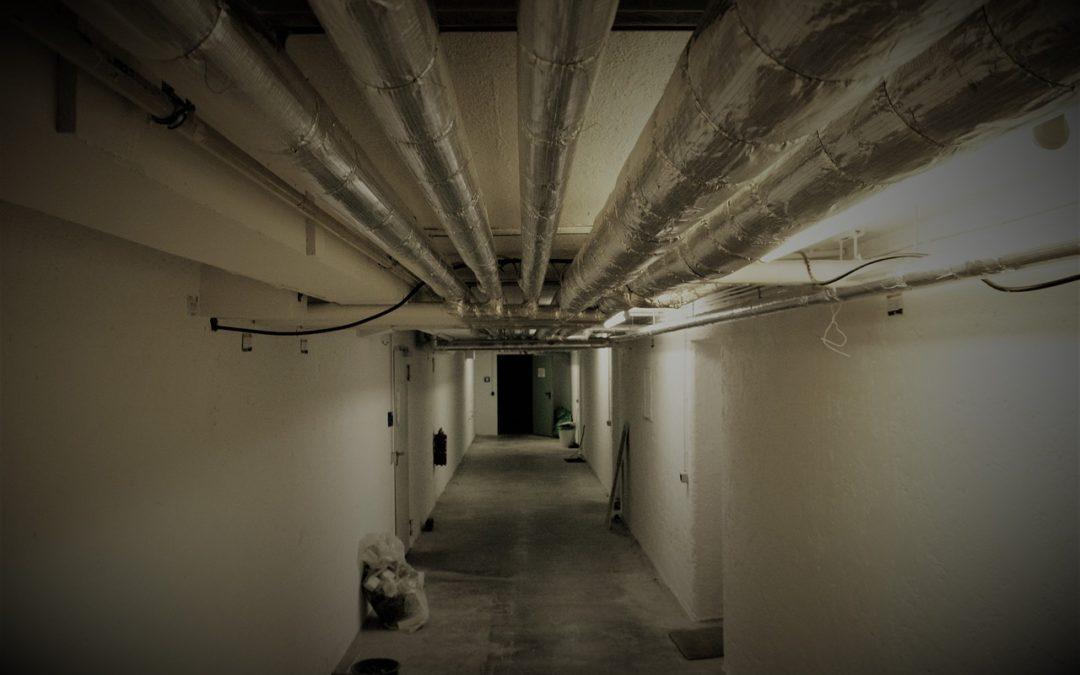 Modernizacja piwnicy – pomysły na zabudowę