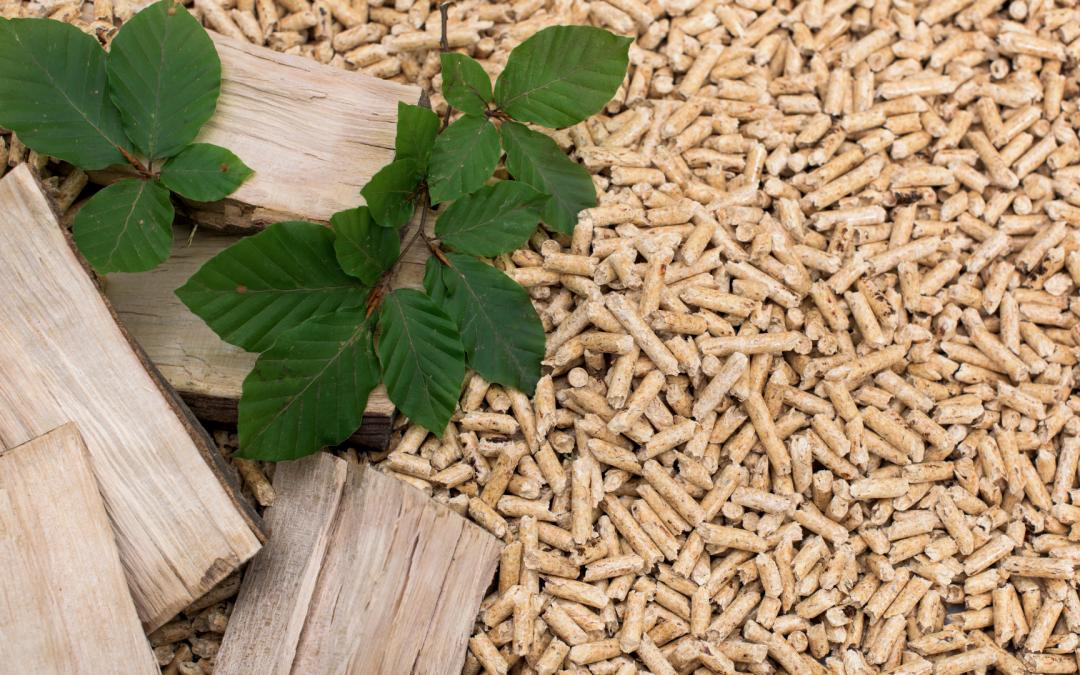 Pellet drzewny – dlaczego warto z niego korzystać?